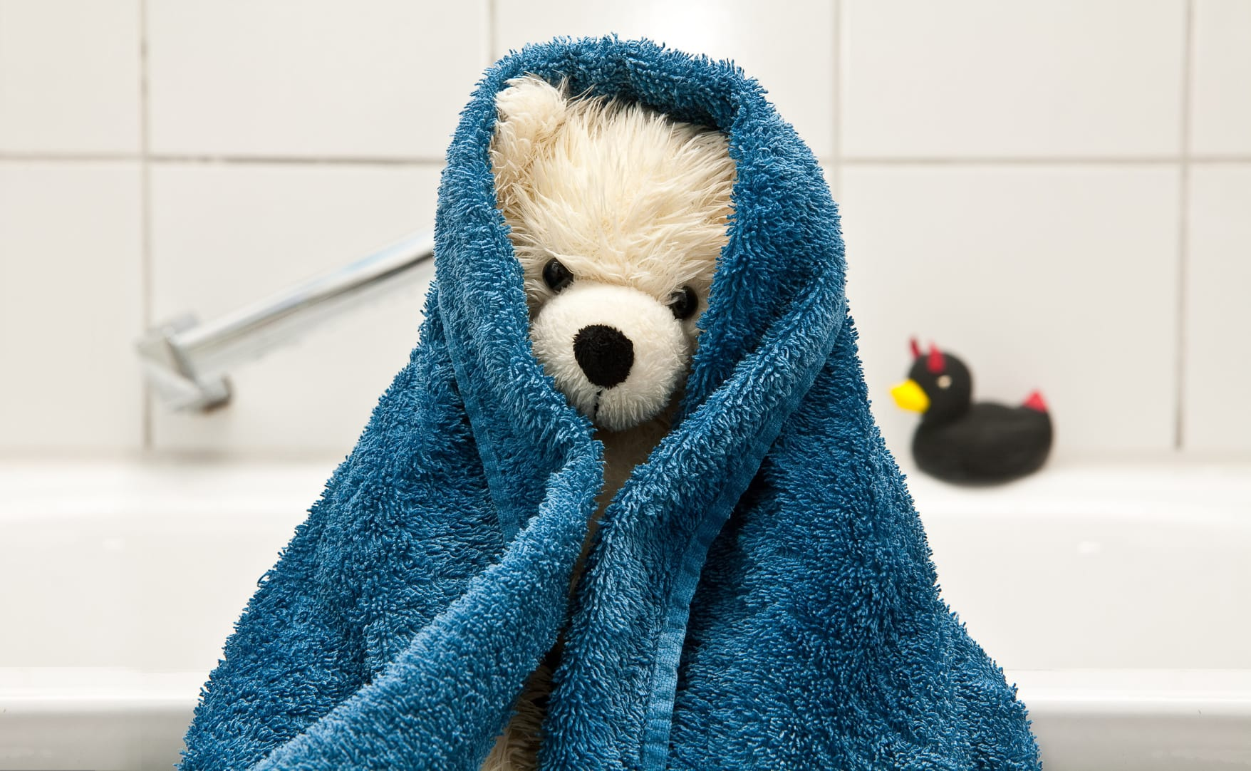 Stofftiere waschen – So wird's gemacht