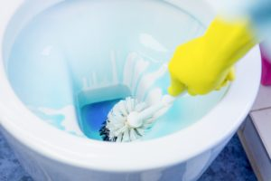 WC putzen mit Reinigungsmittel und Toilettenbürste