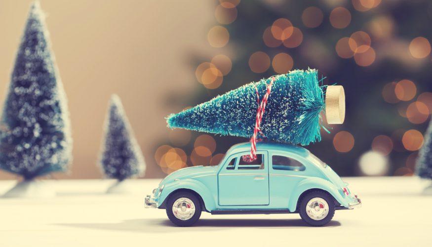 Weihnachtsbaum haltbar machen – 7 Tipps & Tricks!